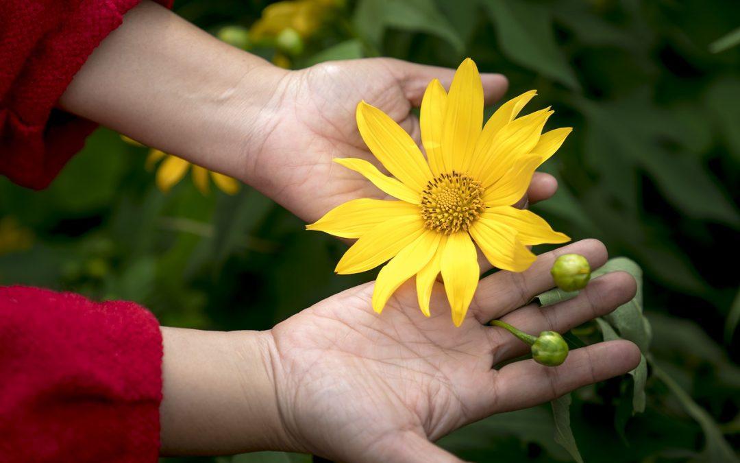 O que é mantido na consciência é o imã de tudo o que você atrai ou repele!